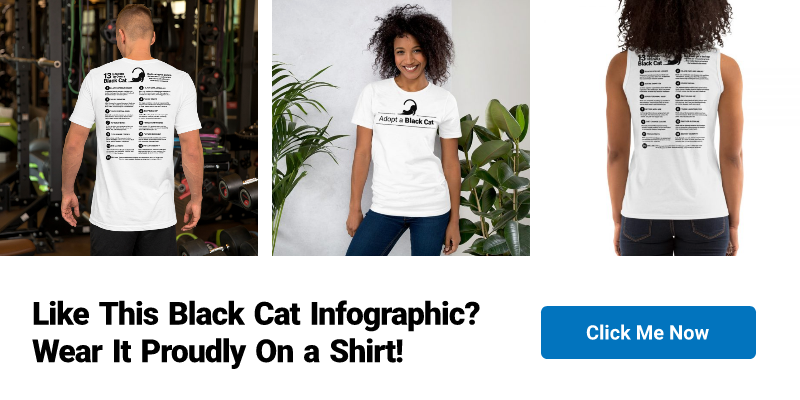 13 Reasons To Own a Black Cat Shirt